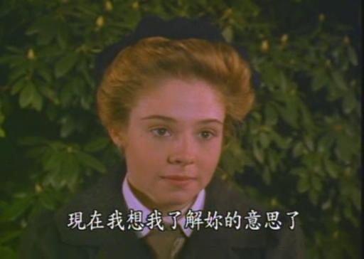 连续剧12集 绿山墙的安妮 rmvb